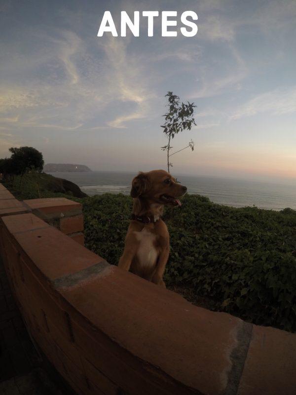 Preset Malecón - Antes