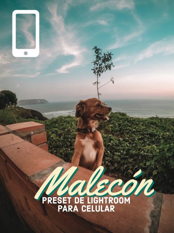 Preset Malecón